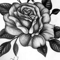 Rosen_Draw_Guns_N_Ink-Felix_Koch